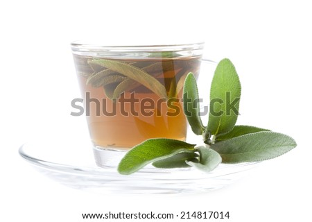 hot sage tea with fresh sage, white background, isolated, - stock photo