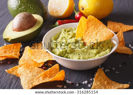 hot sauce guacamole, nachos chips and ingredients. Horizontal