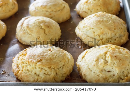 hot scone fresh from oven - stock photo