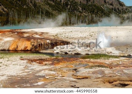 Hot Spring Activity, Yellowstone National Park