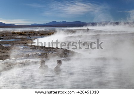 Hot springs in the Andes near the border with Chile  - stock photo