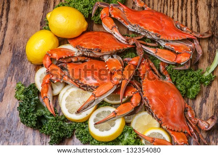 Hot steamed Blue Crabs, symbol of Maryland State and Ocean City, MD - stock photo