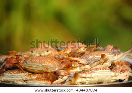 hot steamed Crabs - stock photo