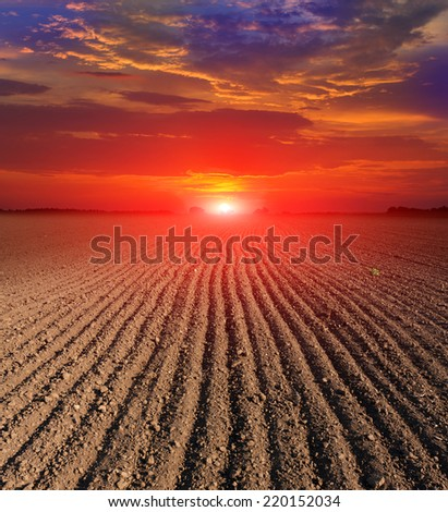 hot sunset over plugged field - stock photo