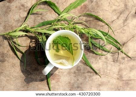 Hot tea and marijuana,cannabis on the wooden background - stock photo