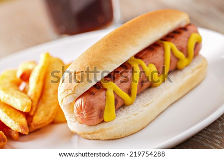Hotdog and Fries with a Beer - stock photo