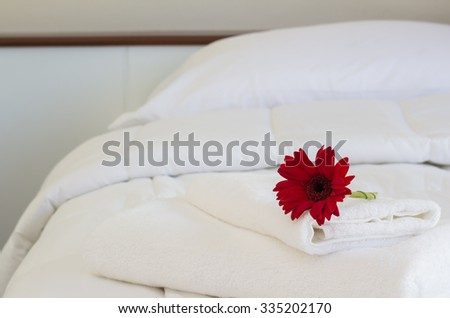 Hotel room interior with red flower - stock photo