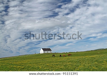 House and icelandic horses on a dramatic sky near Husavik in Iceland - stock photo