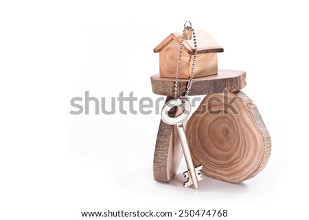 House and key on sections of the olive tree - stock photo