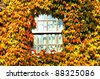 house covered autumn leaves - stock photo