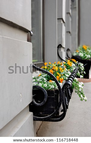 House decoration with flowers - stock photo