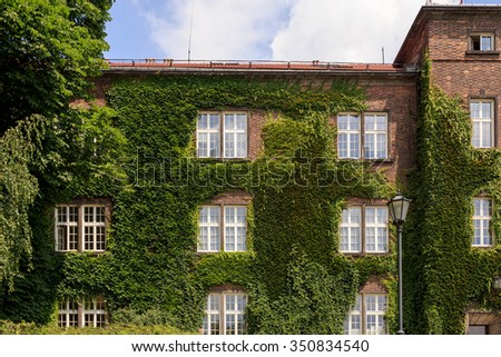 House in grapes at Krakow near Wawel Castle - stock photo