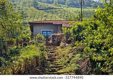 House in tea plantation at Munnar. Kerala. India - stock photo
