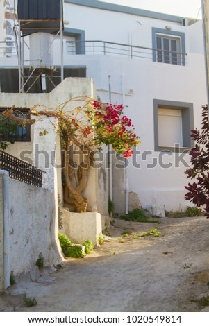 House in traditional village Milatos on Crete, Greece