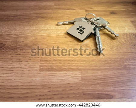 House Keys On Wood Table Color Stock Photo 442820446 ...