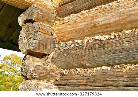House made of logs and insulated with moss in the cracks in traditional Russian style - stock photo