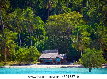House of Robinson Crusoe. Beautiful island with blue bay and palm trees - stock photo