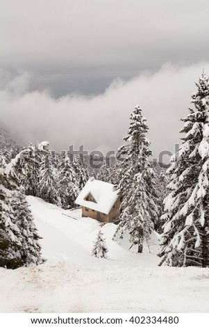 House on a hillside surrounded by snowy fir trees and gray clouds. - stock photo
