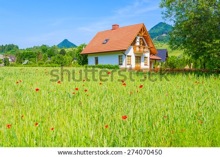House on green field with poppy flowers in Pieniny Mountains, Poland - stock photo