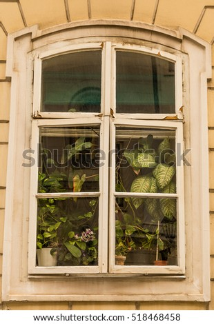 House outdoor wall and window with beautiful flowers in Zagreb, Croatia.
