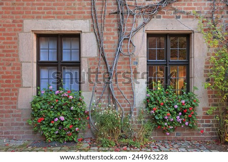 House windows with flowers, vines and brick wall in Nuremberg, Germany  - stock photo