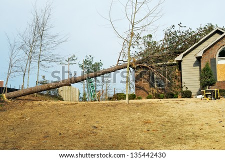house with a fallen pine tree on its roof after an EF2 tornado went through this southern USA neighborhood in Columbus GA in March.  - stock photo