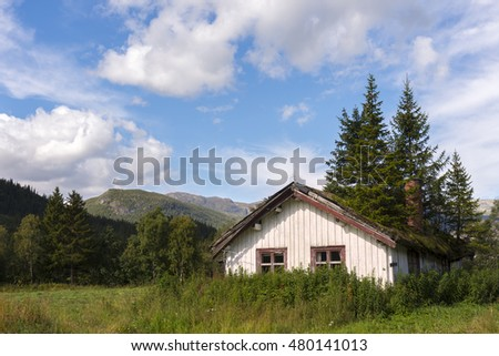 house with fir trees on roof in Tuv in Norway