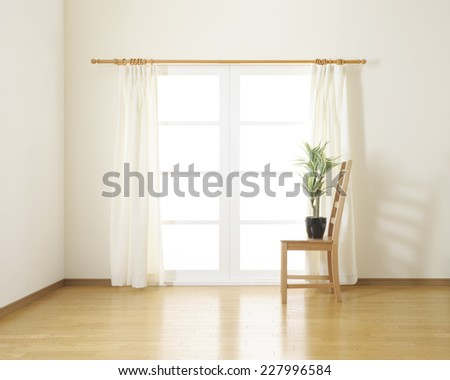 houseplant on wooden chair in white room - stock photo