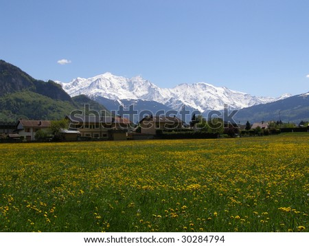 Houses and grassland in front of Mont Blanc