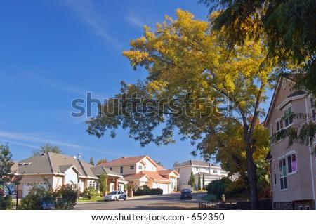 Houses in a suburban neighborhood - stock photo