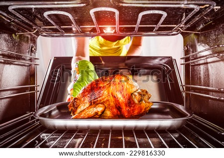 Housewife prepares roast chicken in the oven, view from the inside of the oven. Cooking in the oven. - stock photo