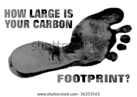 How Large is Your Carbon Footprint?
