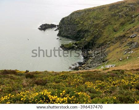 Howth cliffs, Ireland - stock photo