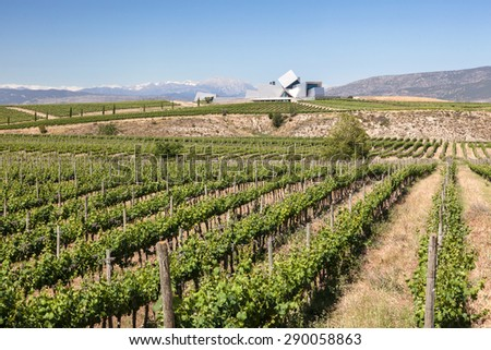 HUESCA, SPAIN - MAY 26: Wine fields at the Sommos Bodega in the province of Huesca. May 26, 2015 in Huesca, Spain