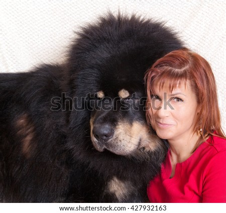 Huge black Tibetan Mastiff and a young woman in a red dress