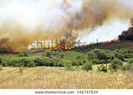 Huge bush fire at the west coast in Portugal - stock photo