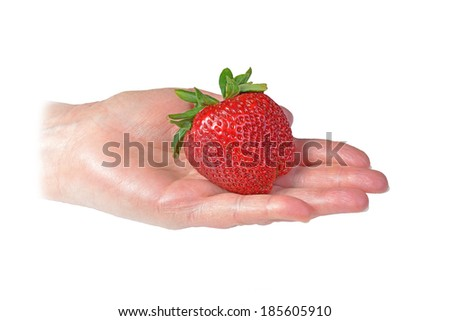 Huge red strawberry being held in hand - stock photo