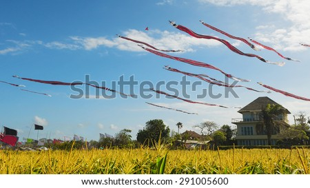 Huge Traditional Balinese kites with the long red black white striped tails and dragon head flying in sky over yellow field. Culture of island Bali people and tourist attraction in beautiful Indonesia - stock photo