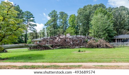 Huge tree fallen on a home causing storm damage