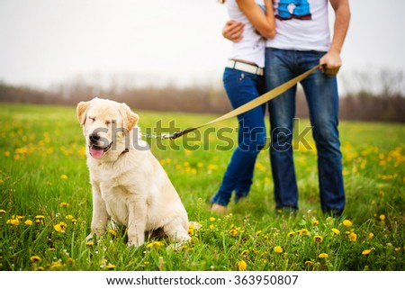 hugs man and woman walking with dog retriever on spring