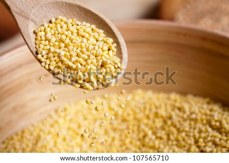 hulled millet - stock photo
