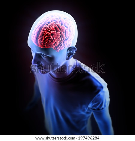 Human anatomy illustration - central nervous system with a visible brain - stock photo