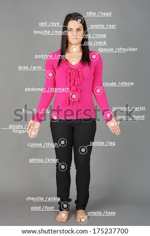 Human anatomy or body: woman posing on grey with french and english words - stock photo