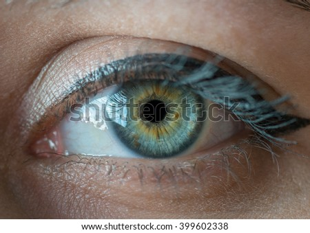 Human blue eye with reflection closeup. Macro shot. - stock photo
