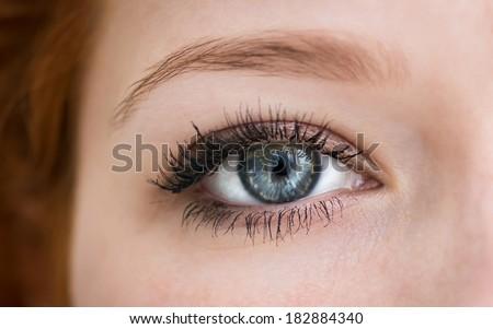 Human blue eye with reflection. Macro shot.  - stock photo
