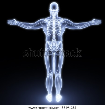 human body by X-rays. 3d render - stock photo
