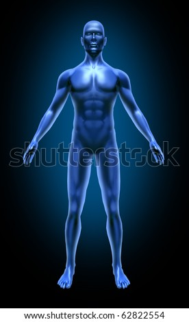 Human Body Medical Stock Photos, Images, & Pictures ...