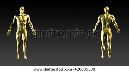 Human Body Presentation Background for Medical Anatomy Art 3d Illustration Render - stock photo
