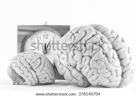 human brain and clock with black  and white color concept - stock photo