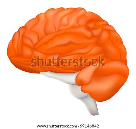 Human Brain, Bitmap copy